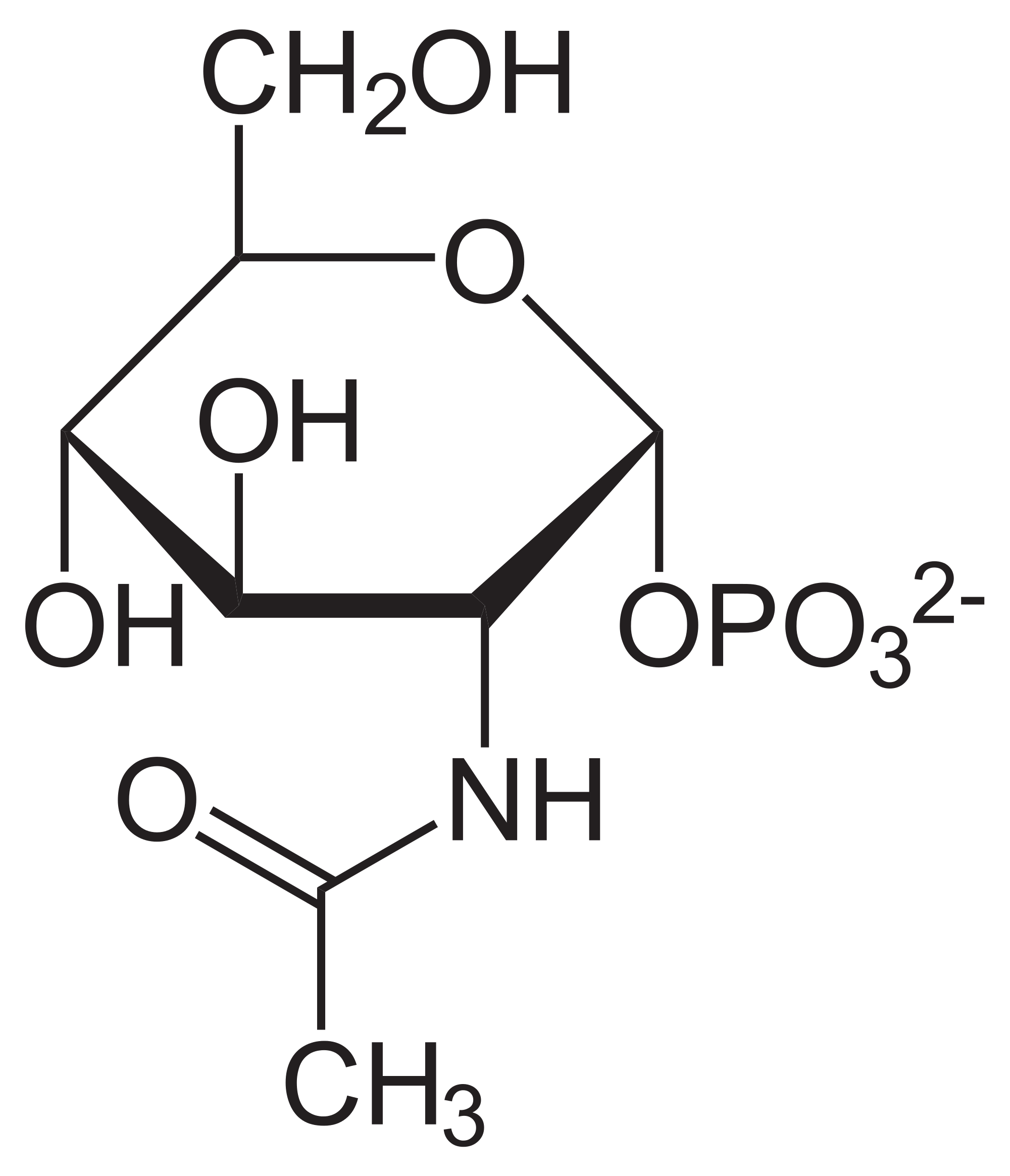 cấu tạo của thuốc bổ xương khớp glucosamine