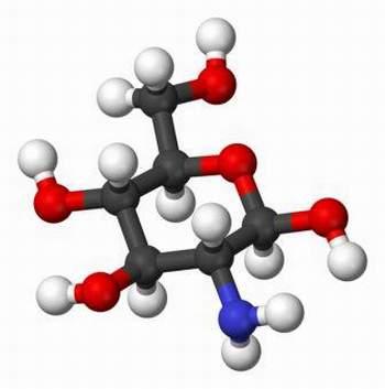 tác dụng của thuốc glucosamine
