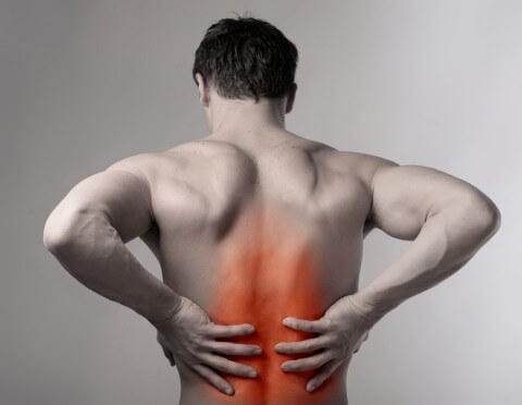 Bị đau lưng có nên tập thể hình?-2