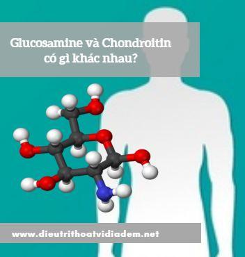 Thuốc Glucosamine và Chondroitin có gì khác nhau?