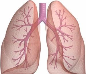 Các bệnh về phổi